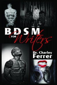 BDSM FOR WRITERS (1)